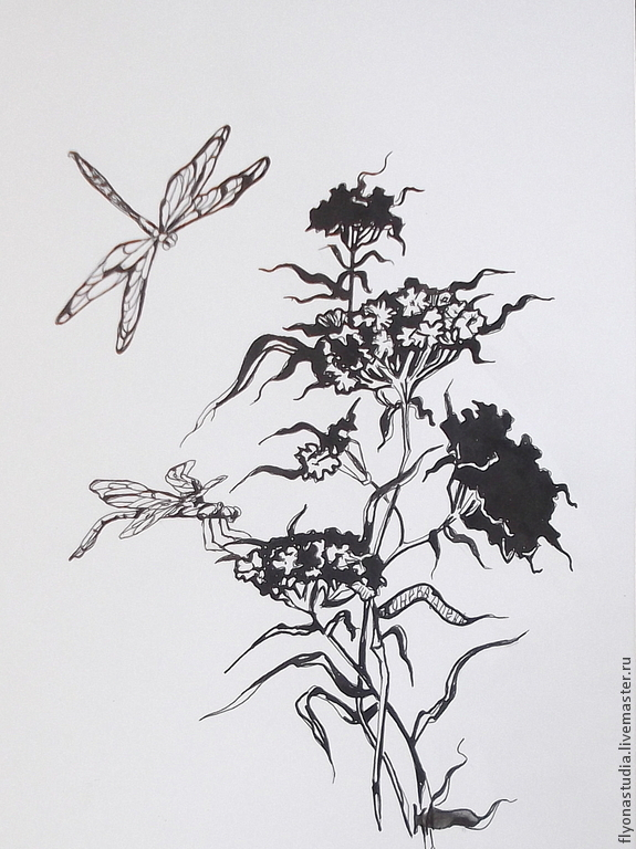 Бабочки стрекозы: картинки и фото стрекозы и цветы, скачать 18
