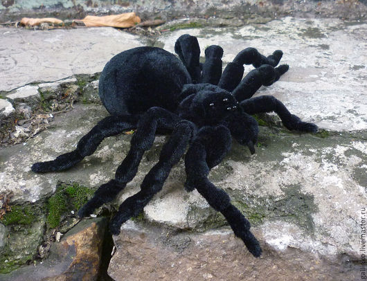 Готика ручной работы. Ярмарка Мастеров - ручная работа. Купить Игрушка паук птицеед. Handmade. Черный, игрушка паук, страшилка