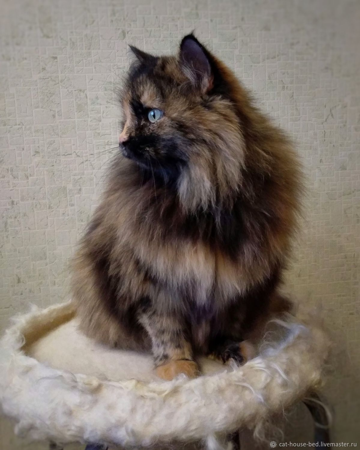 Nest for cats, d-40cm (up to 5kg) bed for cats, house for cats, Lodge, Ekaterinburg,  Фото №1