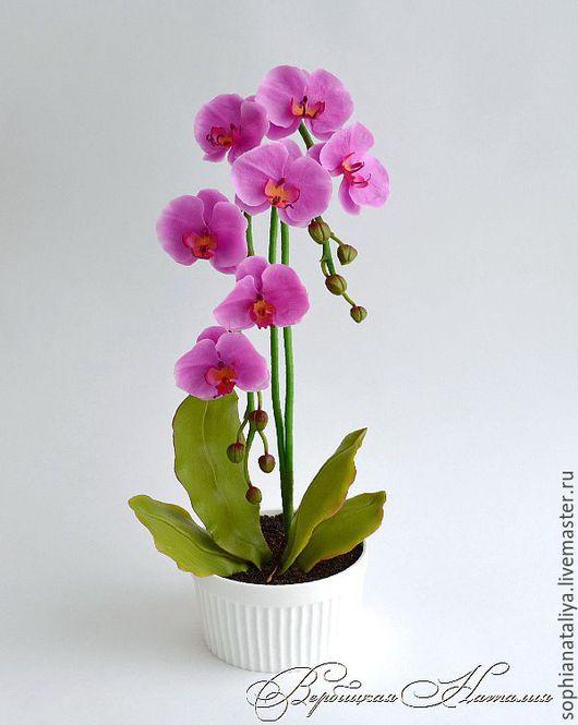 Цветы ручной работы. Ярмарка Мастеров - ручная работа. Купить Орхидея из полимерной глины.Фаленопсис розовый. Handmade. Розовый