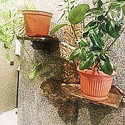 Для дома и интерьера handmade. Livemaster - original item Shelf for flowers. Handmade.