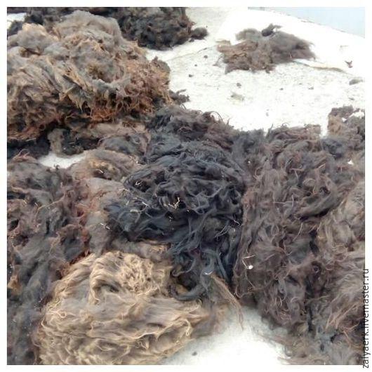 Флис. Нестираная овечья шерсть(сырец, руно) Цена 250 руб/кг