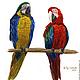 Животные ручной работы. Ярмарка Мастеров - ручная работа. Купить Картина акварелью Парочка красный попугаи птицы синий. Handmade.