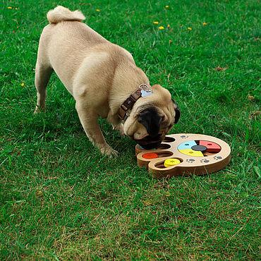 Товары для питомцев ручной работы. Ярмарка Мастеров - ручная работа Интерактивная IQ головоломка для собаки Лапка / собака будет рада. Handmade.