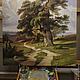 """Пейзаж ручной работы. Картина """"Дубы"""". Эдуард Жалдак - живопись. Ярмарка Мастеров. Лесной пейзаж, картина в столовую"""