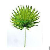 Картины и панно ручной работы. Ярмарка Мастеров - ручная работа Картина Лист пальмы ботаническая акварель тропический стиль зеленый. Handmade.