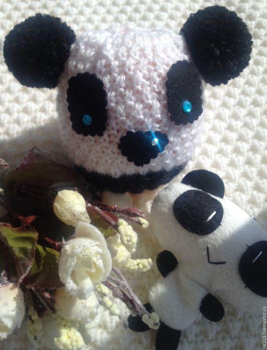 Полярная Панда