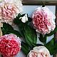 пионы,цветы,летние цветы,картина цветы летние,интерьерная картина,картина цветов,цветы из полимерной глины,пионы из полимерной глины,розовые цветы,белые цветы,белые пионы,розовые пионы,картина в интер