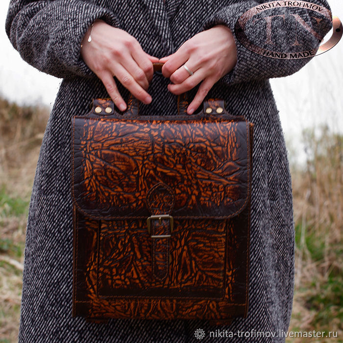 Сумка-рюкзак (трансформер) ручной работы TNBag63, Рюкзаки, Владимир,  Фото №1