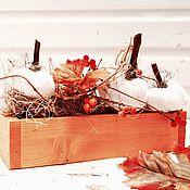 Цветы и флористика ручной работы. Ярмарка Мастеров - ручная работа Композиция с тыквами Теплая осень. Handmade.