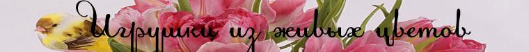 Студия цветов Ranunculus