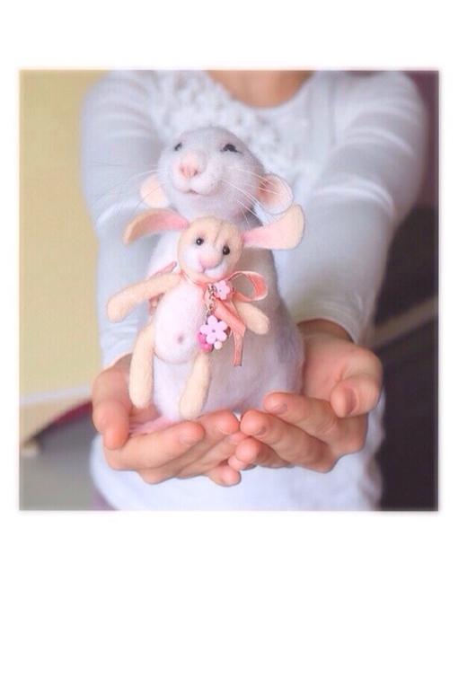"""Миниатюра ручной работы. Ярмарка Мастеров - ручная работа. Купить Авторская игрушка из шерсти """"Крыска """". Handmade. Крыса игрушка"""