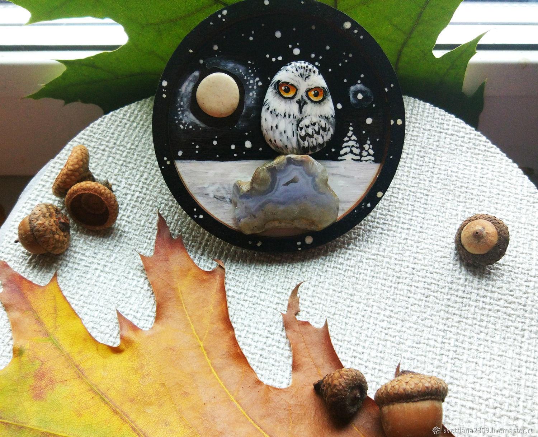 Полярная сова, Магниты, Миасс,  Фото №1