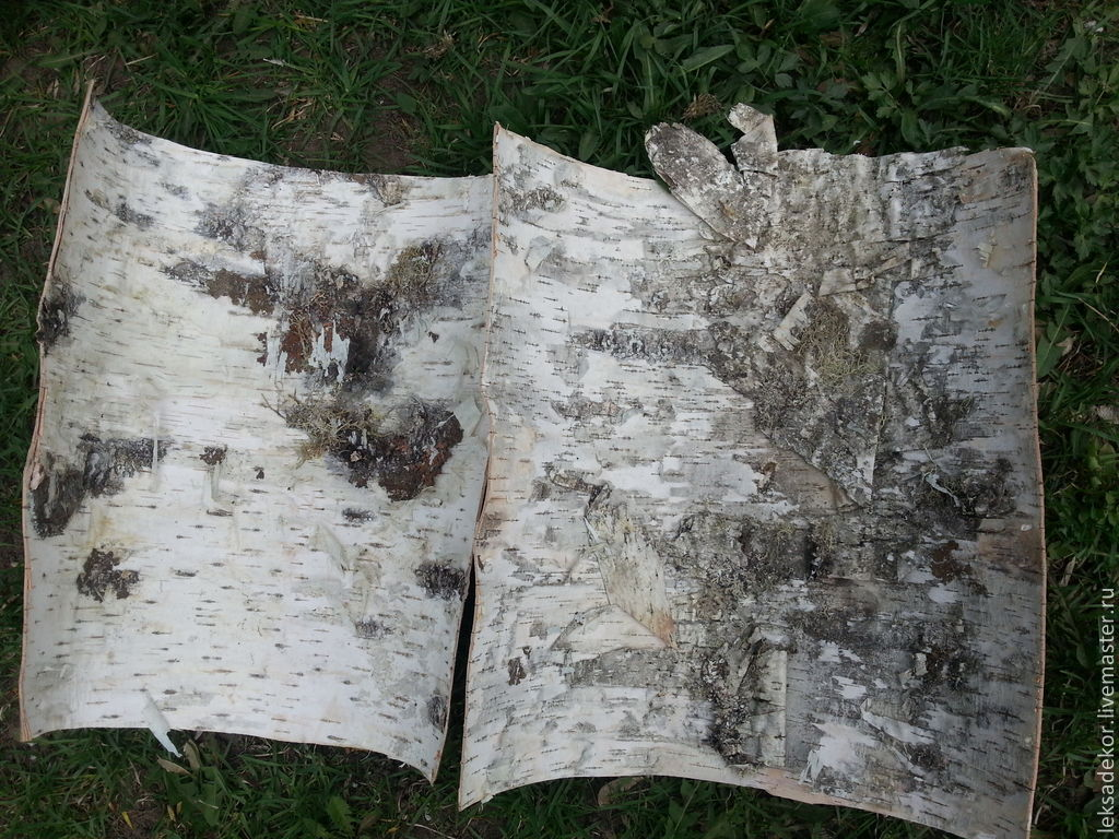 Birch Bark Sheets Supple And Durable Material To Product Handmade Gifts