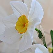 Цветы ручной работы. Ярмарка Мастеров - ручная работа Цветы:Нарциссы из холодного фарфора. Handmade.