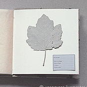 Канцелярские товары handmade. Livemaster - original item Square mini-album for a herbarium of the Forest (for 30 plants). Handmade.