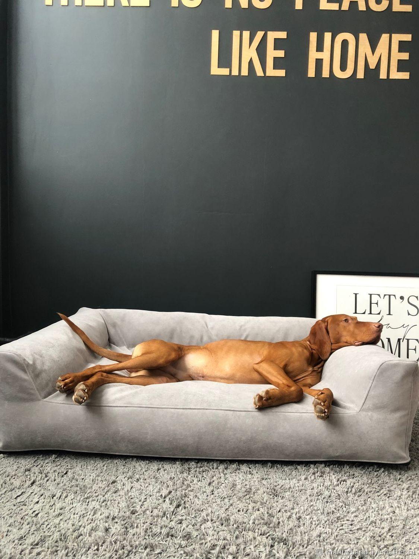 Лежанка-диван для больших собак, размер L, Лежанки, Москва,  Фото №1