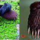 Обувь ручной работы. Ярмарка Мастеров - ручная работа. Купить домашние валяные тапочки из натуральной шерсти Медвежьи лапы. Handmade.