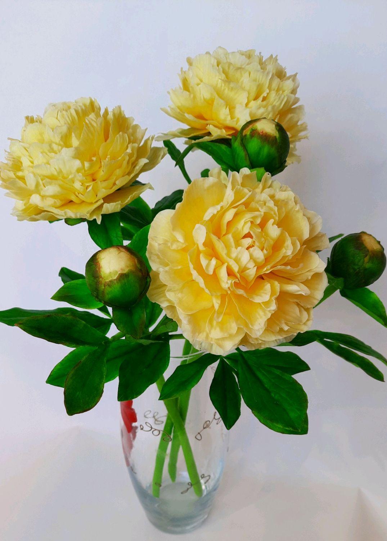 Пионы из холодного фарфора, Цветы, Краснодар,  Фото №1