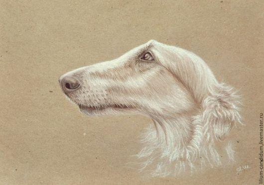Борзая, портрет пастелью на эскизной бумаге