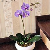 Цветы и флористика ручной работы. Ярмарка Мастеров - ручная работа Сиреневая орхидея фаленопсис из полимерной глины. Handmade.