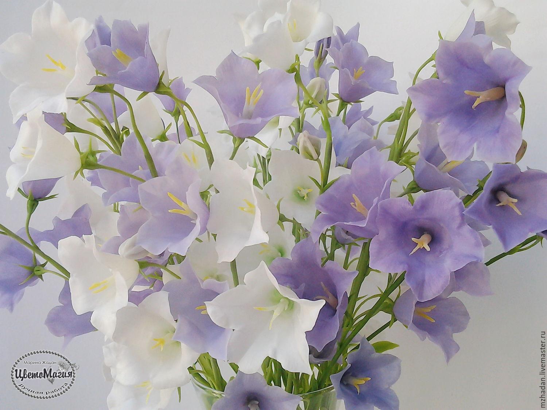 Граммофончики колокольчики цветы букеты фото