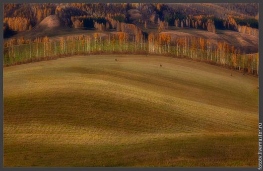 Фотокартины ручной работы. Ярмарка Мастеров - ручная работа. Купить Осеннее поле. Handmade. Пейзаж, природа, осень, ландшафт, простор