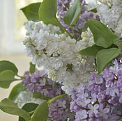 Цветы и флористика handmade. Livemaster - original item A bouquet of lilacs. Handmade.