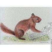 Картины и панно ручной работы. Ярмарка Мастеров - ручная работа Картина Любопытная белка рисунок рыжий цветной карандаш. Handmade.