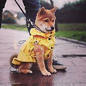 Для домашних животных, ручной работы. Ярмарка Мастеров - ручная работа Дождевик-жилет для собаки. Handmade.