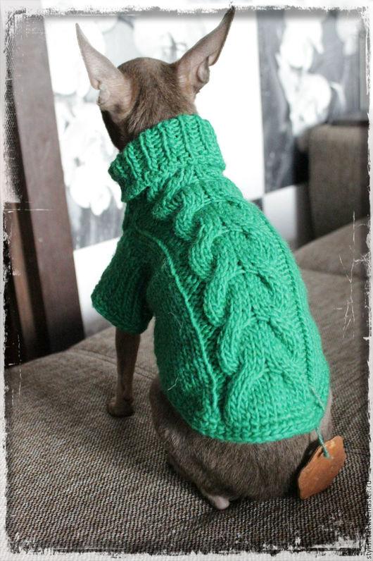 Одежда для собак, ручной работы. Ярмарка Мастеров - ручная работа. Купить Свитер для  собак.. Handmade. Тёмно-зелёный, одежда для йорка