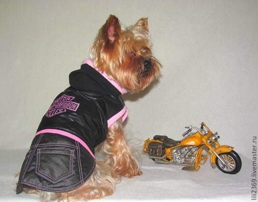 """Одежда для собак, ручной работы. Ярмарка Мастеров - ручная работа. Купить Комплект для девочки """"Харлей"""". Handmade. Комплект, одежда для собак"""