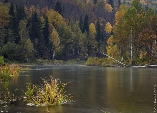 Фотокартины ручной работы. Ярмарка Мастеров - ручная работа. Купить Осень в горах. Handmade. Разноцветный, фотокартина, пейзаж, осень, горы