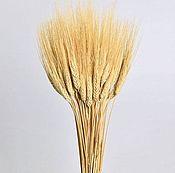 Цветы и флористика ручной работы. Ярмарка Мастеров - ручная работа Букет из золотой пшеницы. Handmade.