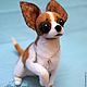 Год Собаки ручной работы. Ярмарка Мастеров - ручная работа. Купить Чихуахуа, войлочная скульптурная собака. Handmade. Собака, любимец