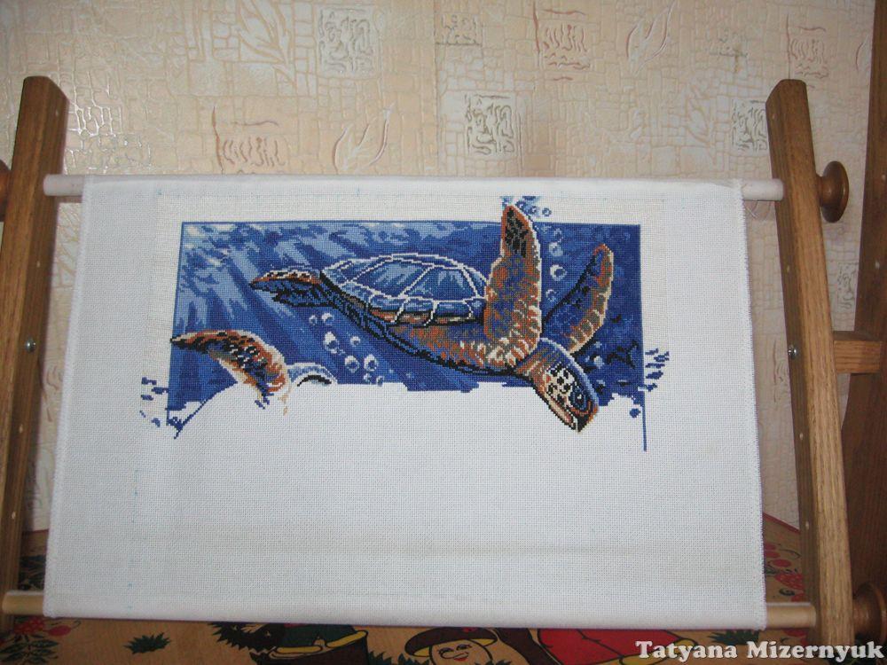 Черепашка вышивка схемы
