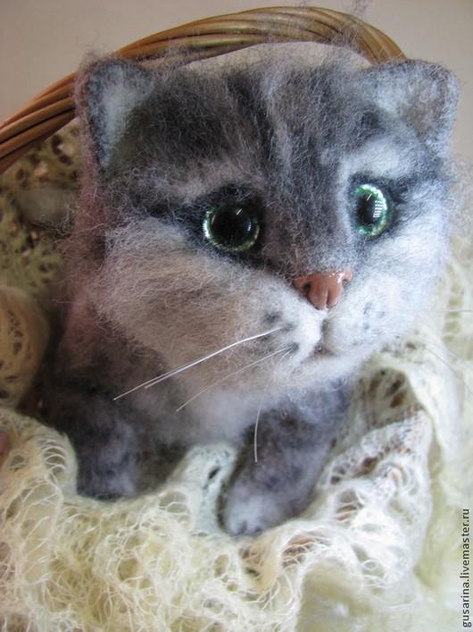 Зеленоглазый котенок Мурзик. Прекрасный подарок Вам или Вашим близким.