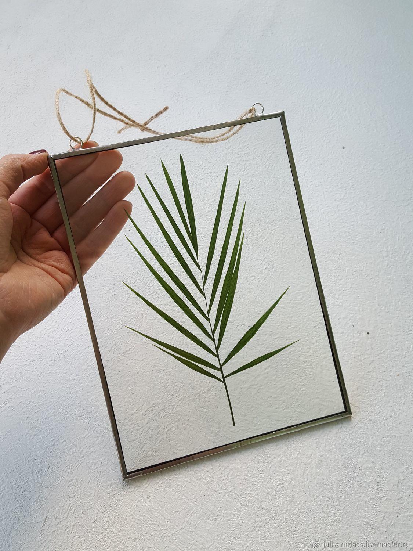 El herbario con hamidoreej en el vidrio – compra u ordena en la ...