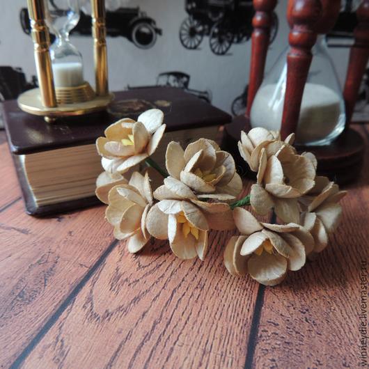 Открытки и скрапбукинг ручной работы. Ярмарка Мастеров - ручная работа. Купить Цветы вишни сепия 5 шт. Handmade. Бежевый