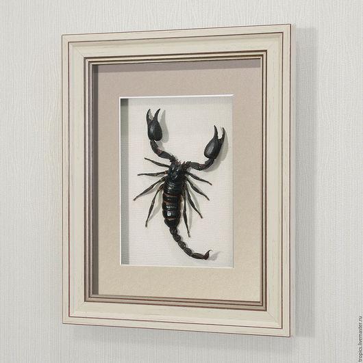 Абстракция ручной работы. Ярмарка Мастеров - ручная работа. Купить Гигантский королевский скорпион (средний). Handmade. Черный, скорпион