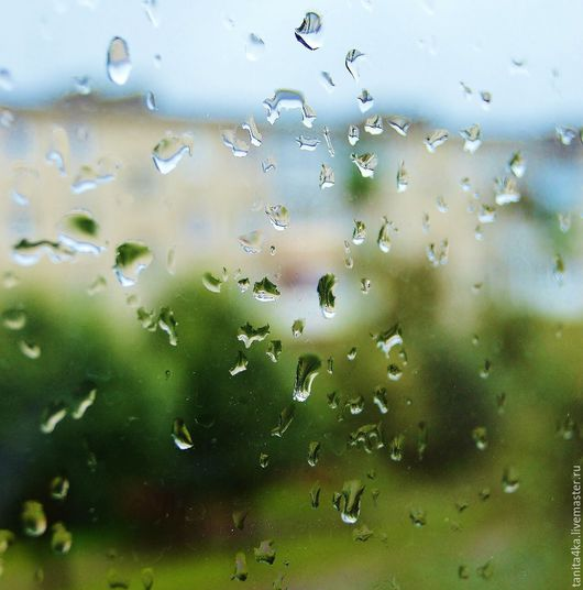Капли дождя.Фотокартина.