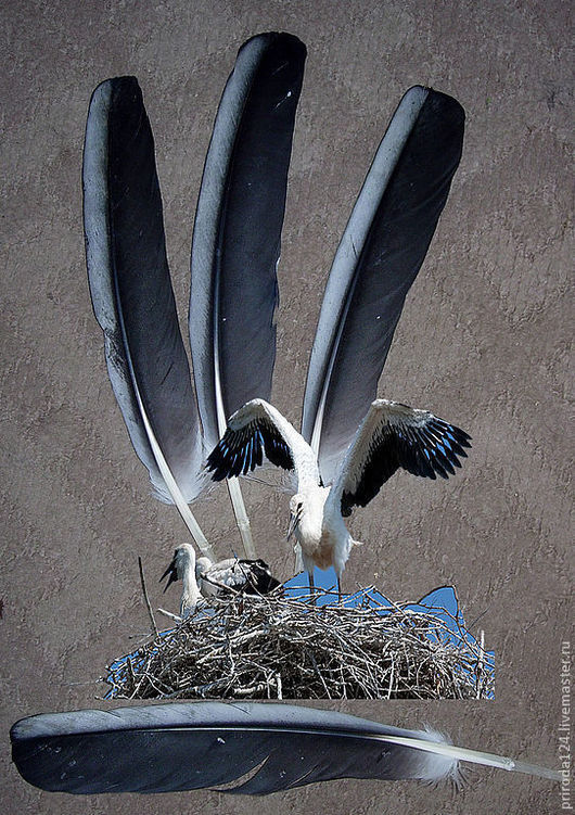 """Другие виды рукоделия ручной работы. Ярмарка Мастеров - ручная работа. Купить Перья птицы """"Аист"""". Handmade. Перья для отделки"""