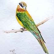 Картины и панно handmade. Livemaster - original item Pictures: Bird bee eater watercolor. Handmade.