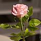 Цветы ручной работы. Роза из холодного фарфора. Алла Бурмистрова. Интернет-магазин Ярмарка Мастеров. Цветок, цветы из полимерной глины