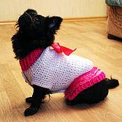 Для домашних животных, handmade. Livemaster - original item Warm sweater for dogs custom made any size. Handmade.