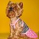 """Одежда для собак, ручной работы. Комплект """"Ах,Лето!"""". Лиля Одежда для собак. Интернет-магазин Ярмарка Мастеров. Собаки, юбка"""