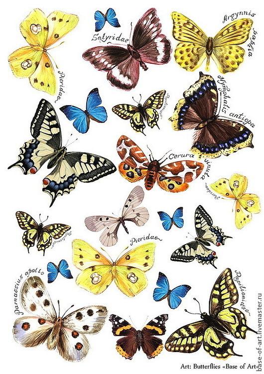 """Декупаж и роспись ручной работы. Ярмарка Мастеров - ручная работа. Купить Декупажные карты """"Base of Art"""" """"Бабочки и птички"""". Handmade."""