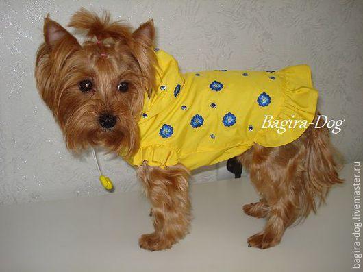 """Одежда для собак, ручной работы. Ярмарка Мастеров - ручная работа. Купить Летний дождевик для йорка """" Незабудки """". Handmade."""