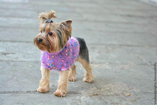 """Одежда для собак, ручной работы. Ярмарка Мастеров - ручная работа. Купить Свитерок для маленькой собачки """"Гламур"""". Handmade. Маленькая собачка"""