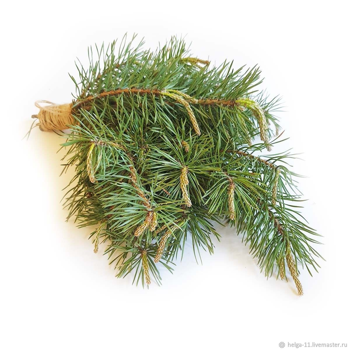 Pine broom for steaming in the bath, Bath accessories, St. Petersburg,  Фото №1